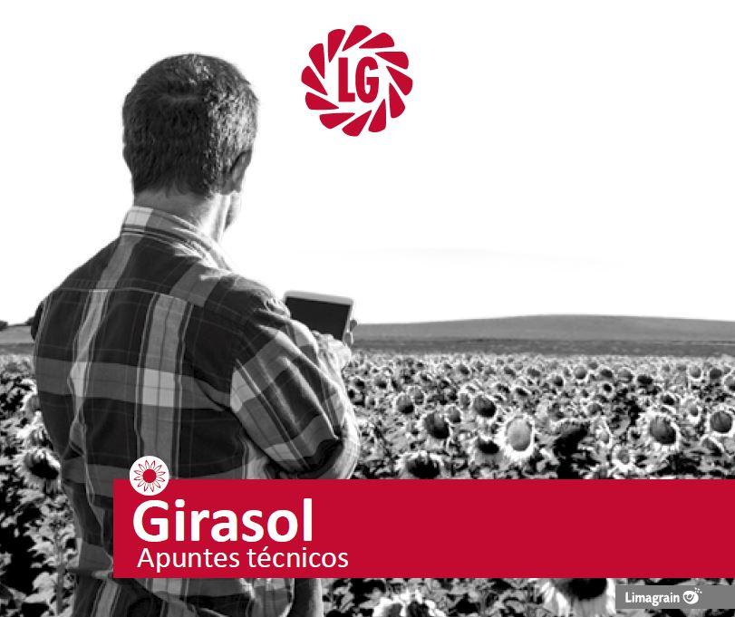 Ebook Girasol- APUNTES TÉCNICOS
