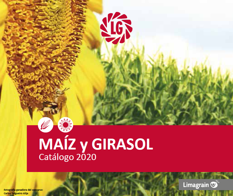 ¡Ya está disponible el nuevo Catálogo de Maíz y Girasol 2020!