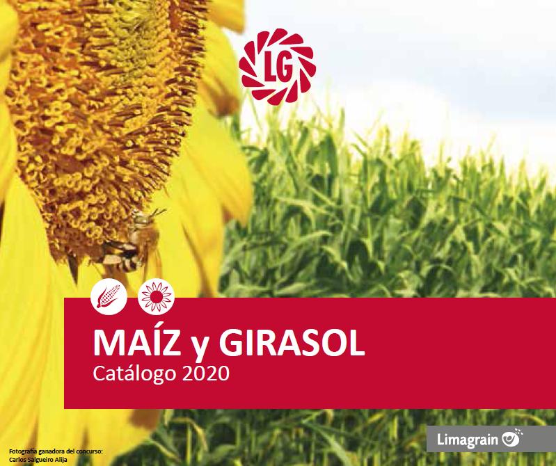 Catálogo Maíz y Girasol 19