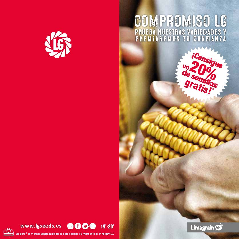Compromiso LG 19-20