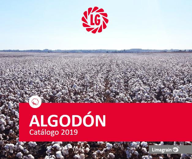 catalogo algodon