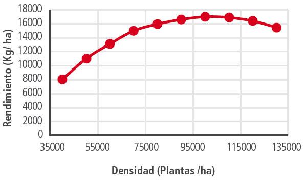 densidad-rendimiento